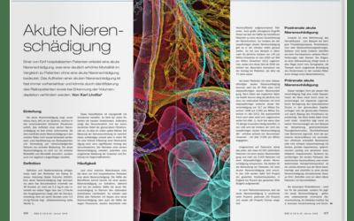 DFP-Literaturstudium: Akute Nierenschädigung
